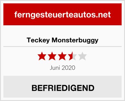 Teckey Monsterbuggy Test