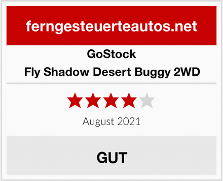 GoStock Fly Shadow Desert Buggy 2WD Test